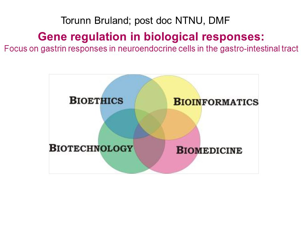 Gene regulation in biological responses: