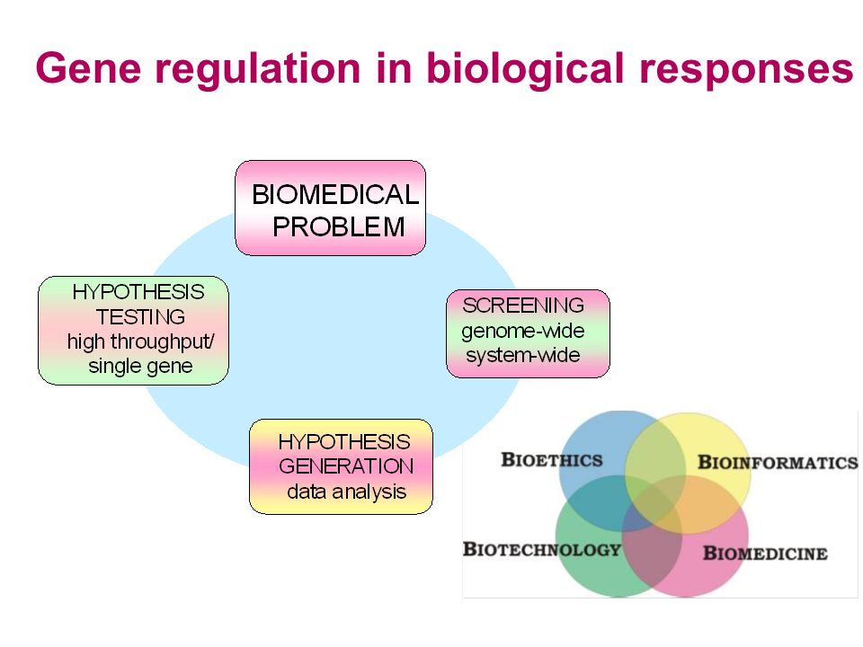 Gene regulation in biological responses