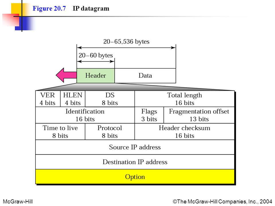 Figure 20.7 IP datagram