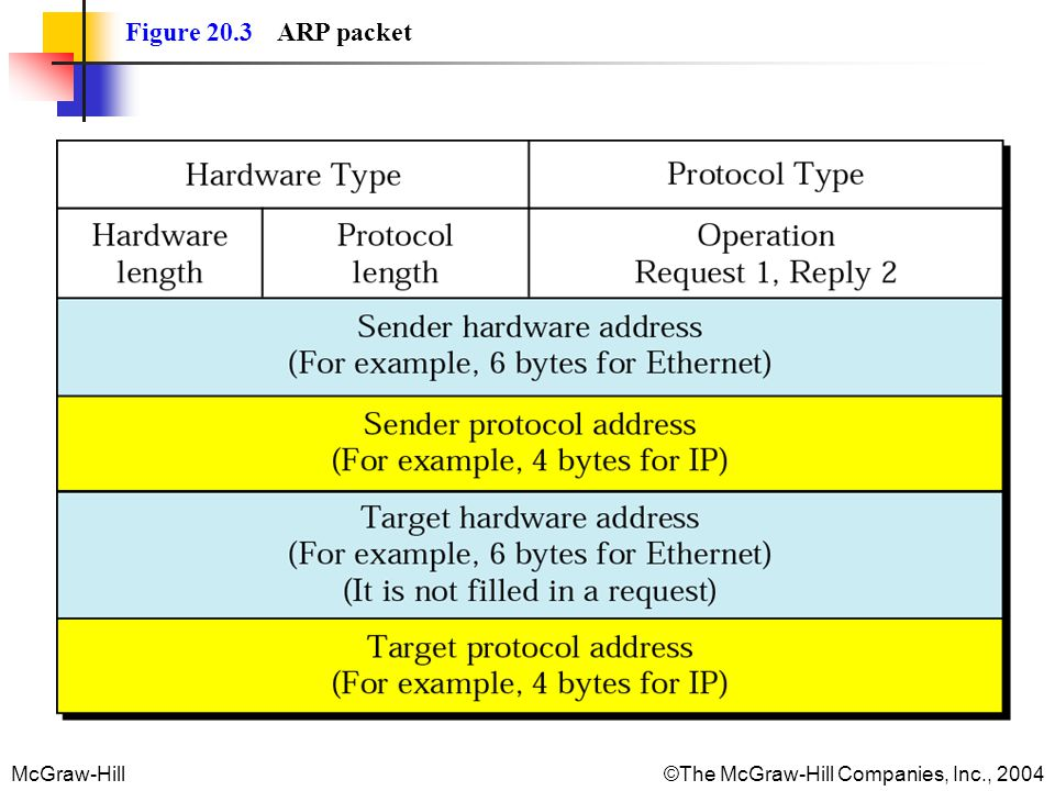 Figure 20.3 ARP packet
