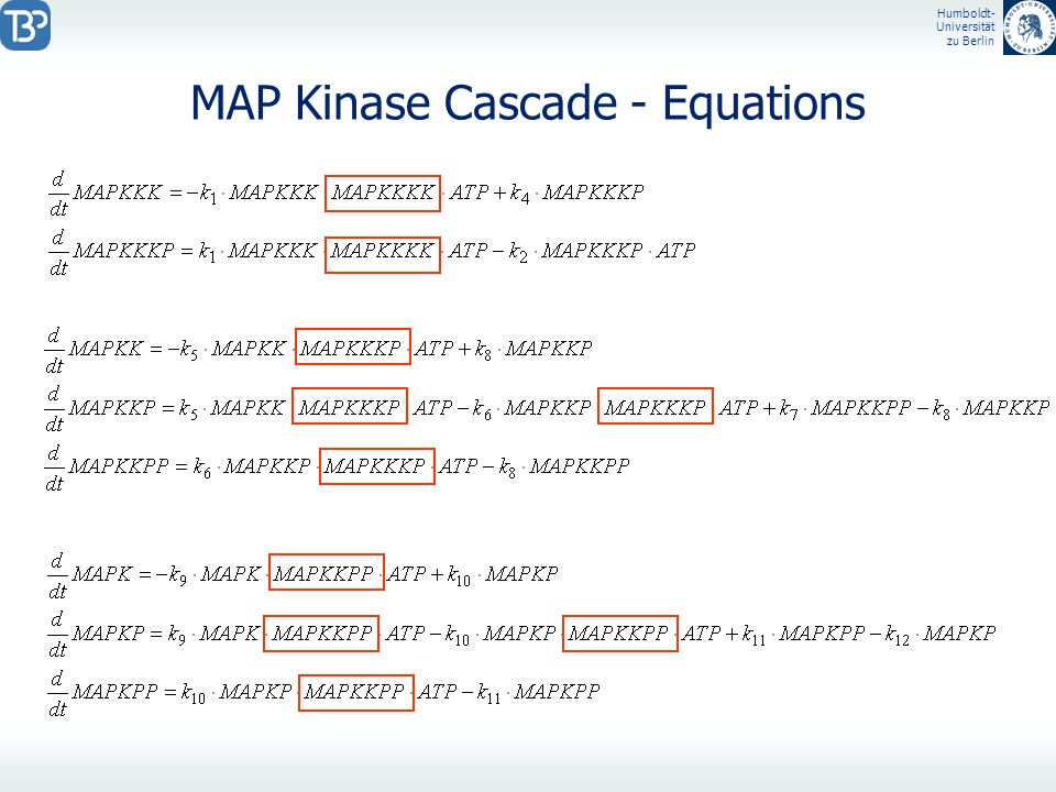 MAP Kinase Cascade - Equations