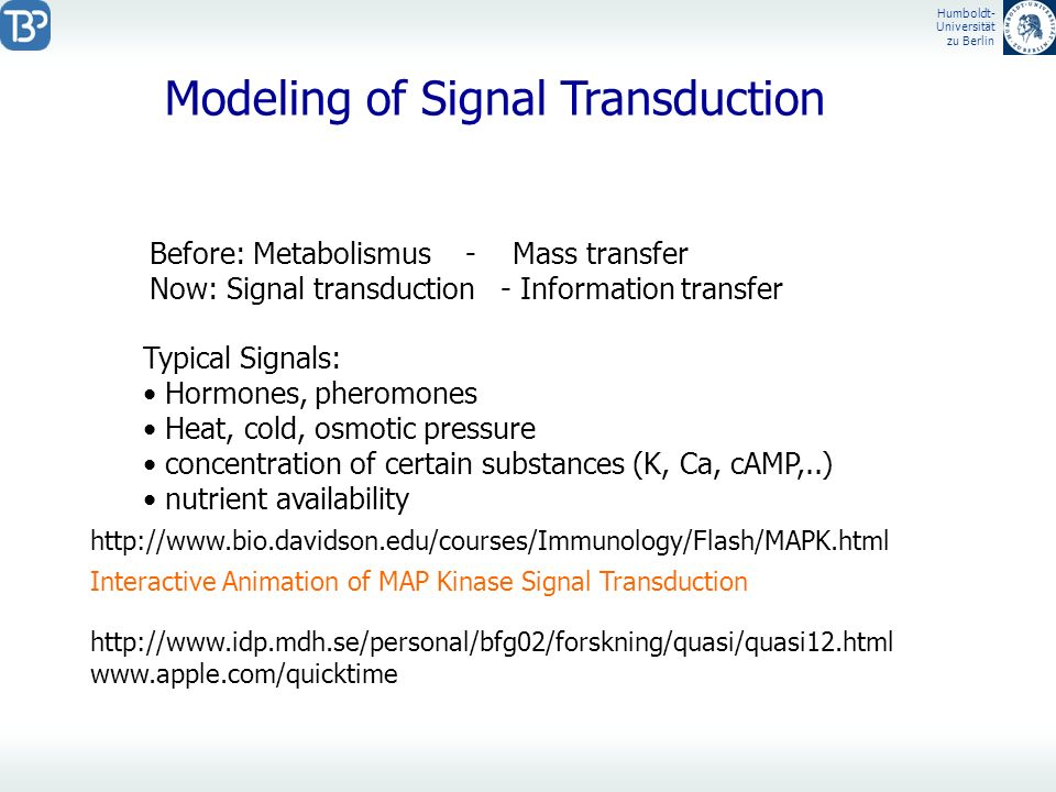 Modeling of Signal Transduction
