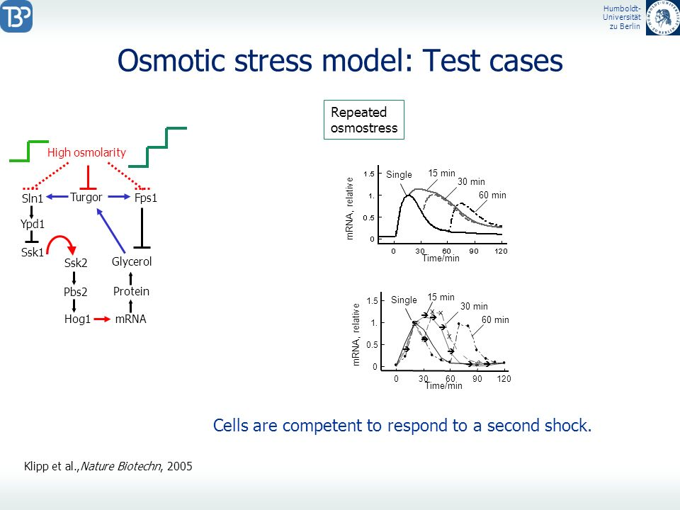 Osmotic stress model: Test cases