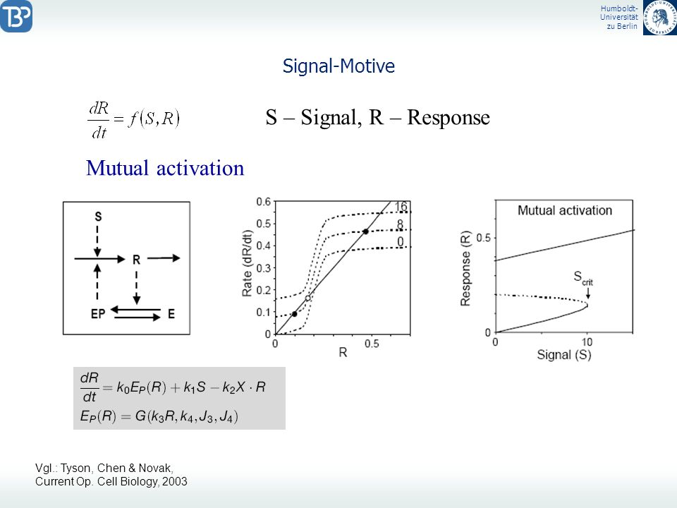 S – Signal, R – Response Mutual activation Signal-Motive