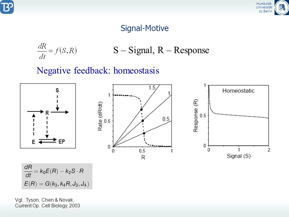 Negative feedback: homeostasis