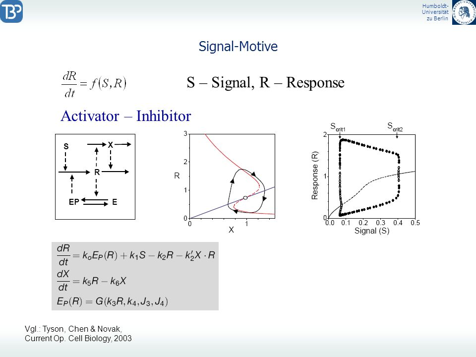 S – Signal, R – Response Activator – Inhibitor Signal-Motive