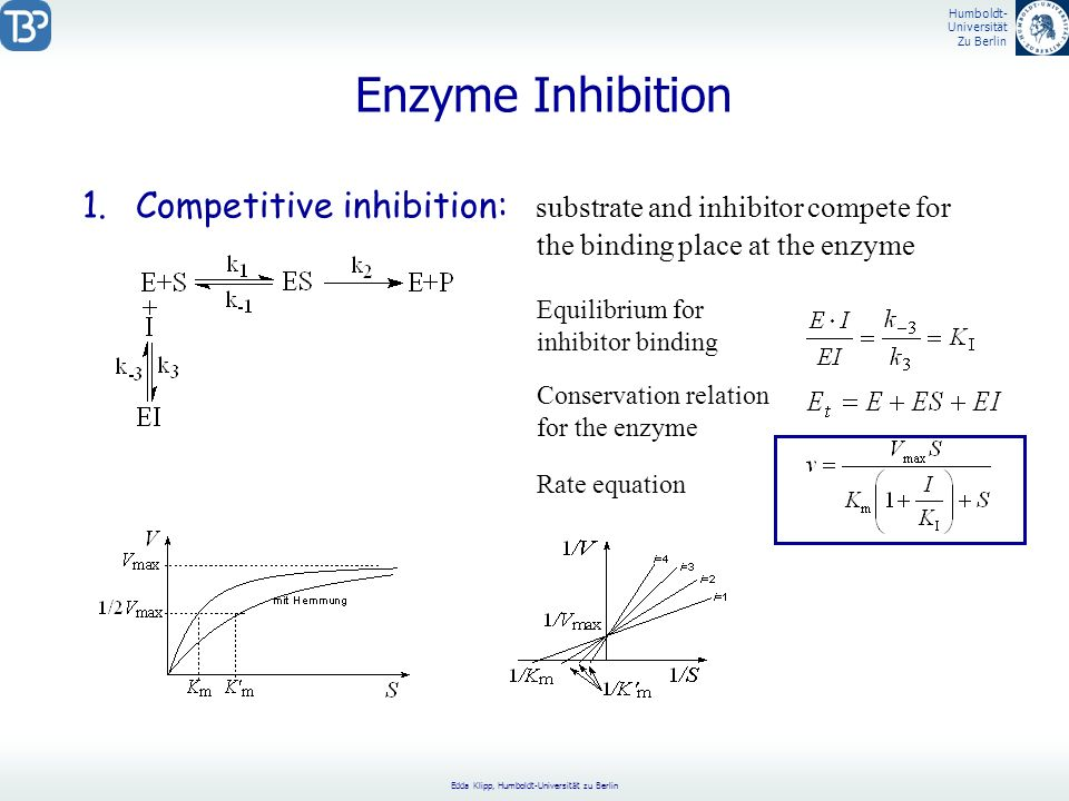 Enzyme Inhibition Competitive inhibition: substrate and inhibitor compete for. the binding place at the enzyme.