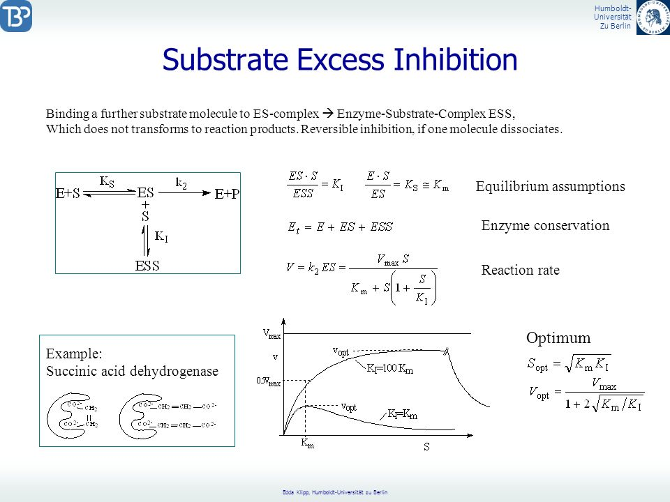 Substrate Excess Inhibition