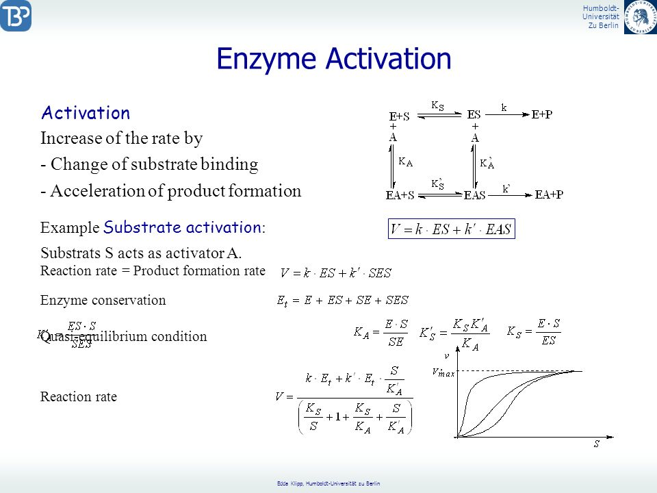 Enzyme Activation Activation Increase of the rate by