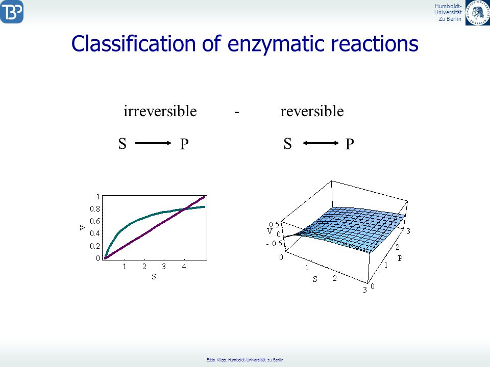 Classification of enzymatic reactions