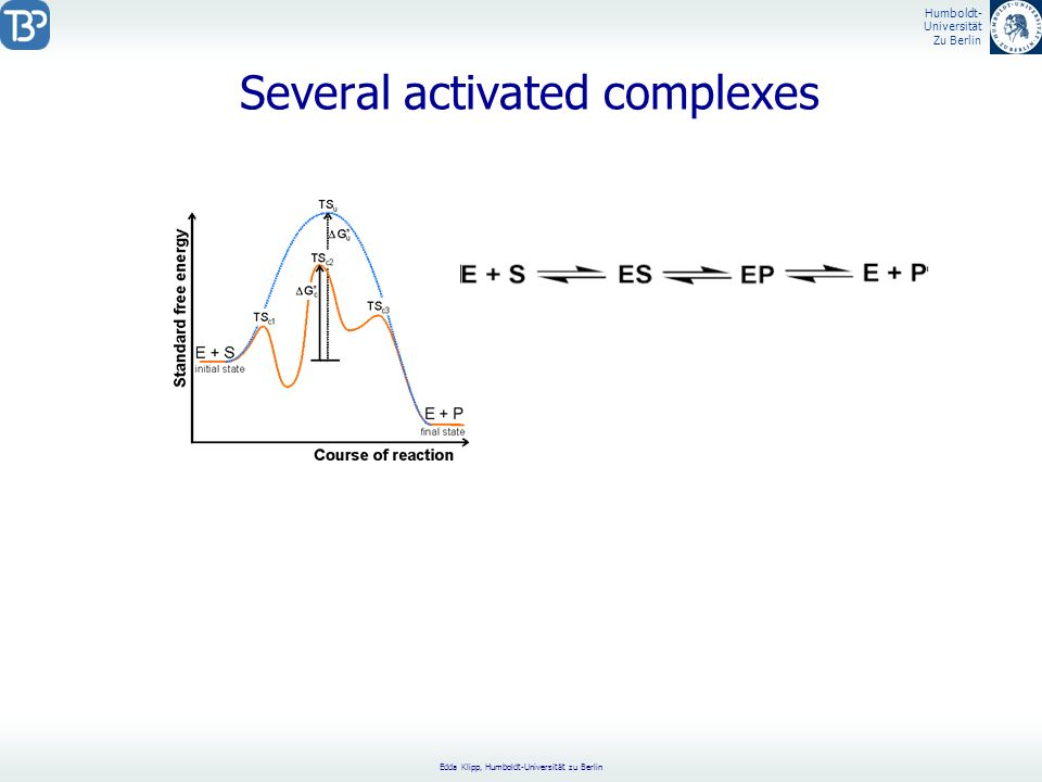 Several activated complexes