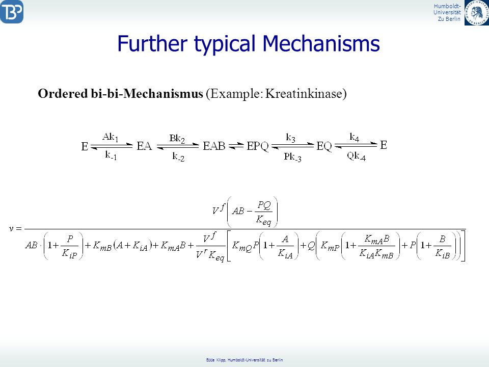 Further typical Mechanisms