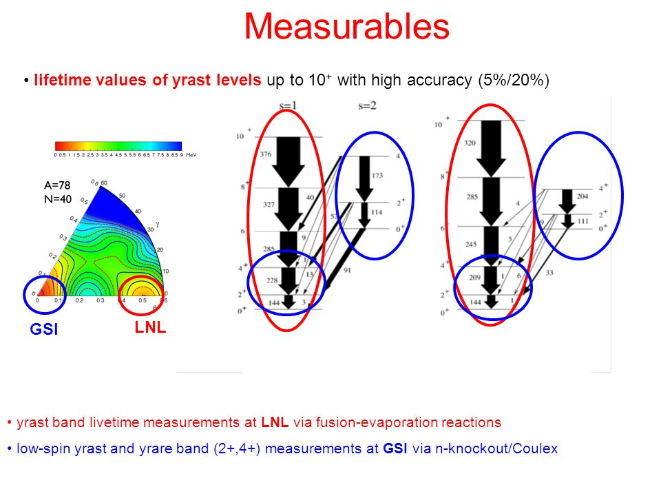 Measurables lifetime values of yrast levels up to 10+ with high accuracy (5%/20%) GSI. LNL.