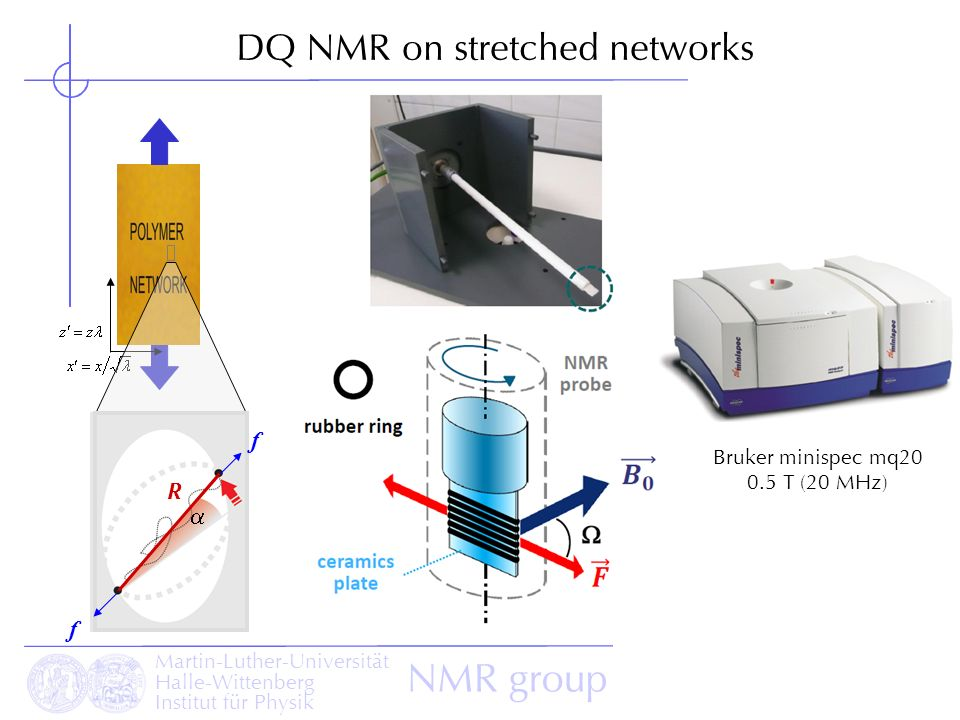 DQ NMR on stretched networks