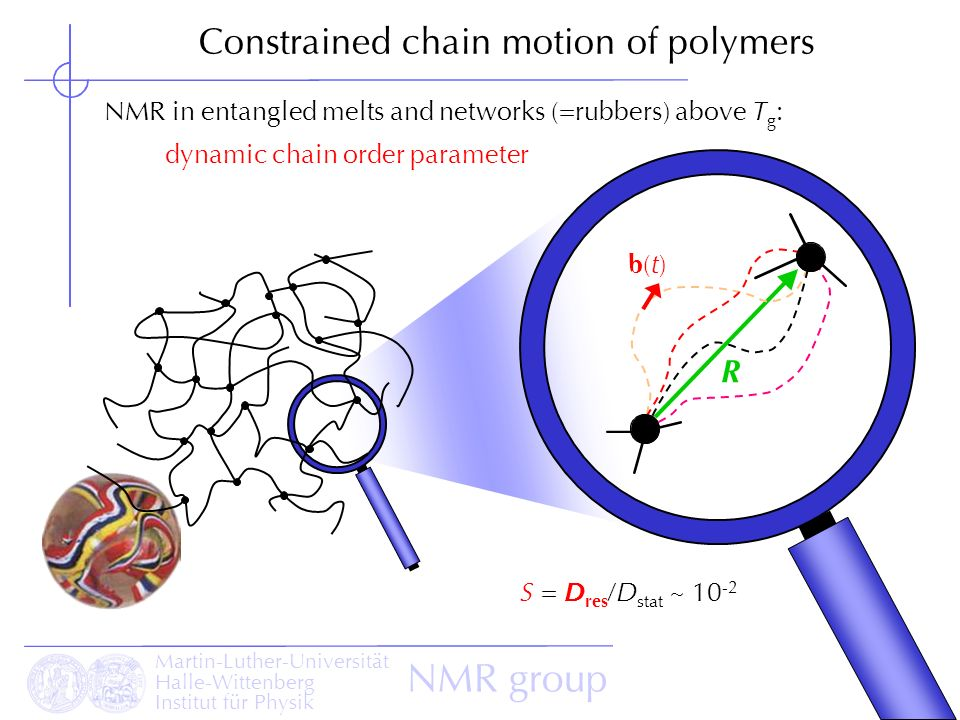 Constrained chain motion of polymers
