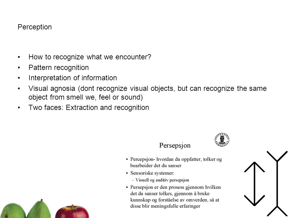 Perception How to recognize what we encounter Pattern recognition. Interpretation of information.