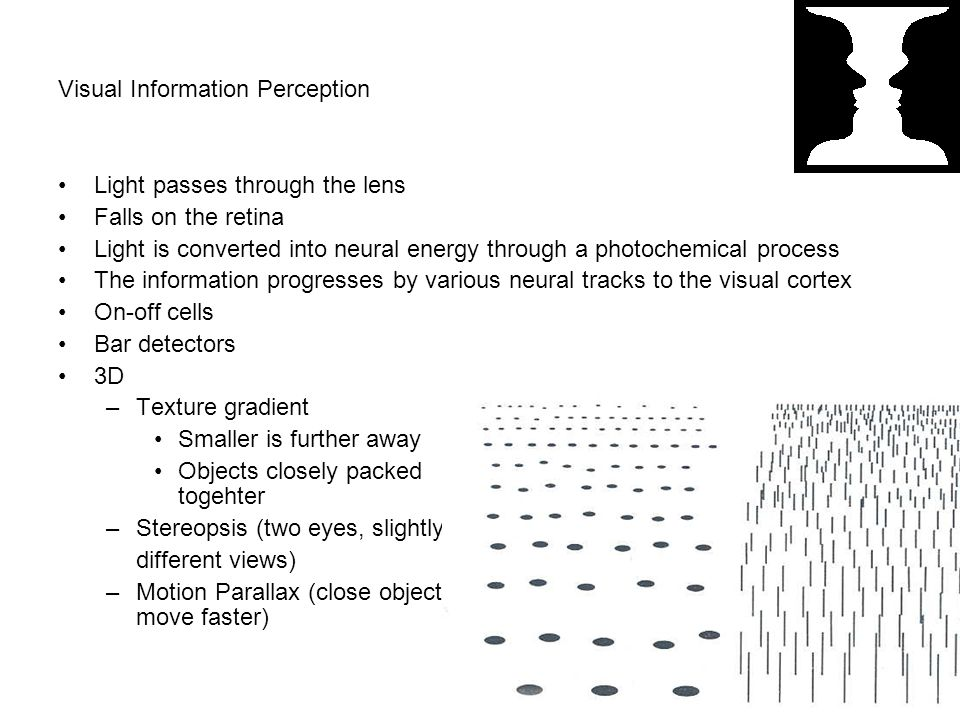 Visual Information Perception