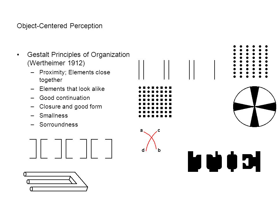 Object-Centered Perception
