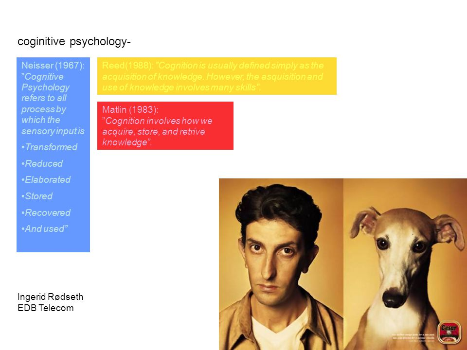coginitive psychology-