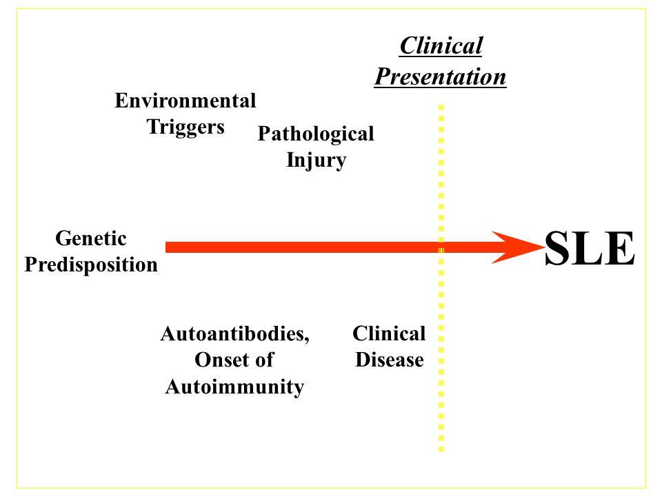 SLE Clinical Presentation Environmental Triggers Pathological Injury