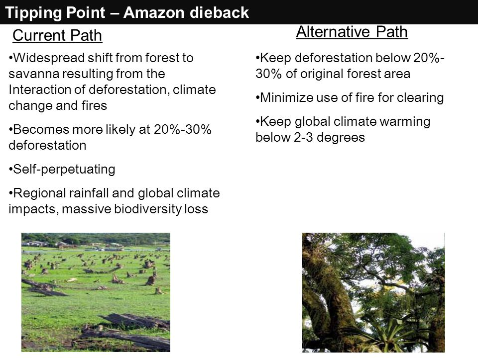 Tipping Point – Amazon dieback Alternative Path Current Path