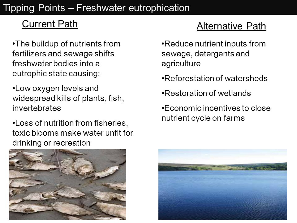 Tipping Points – Freshwater eutrophication