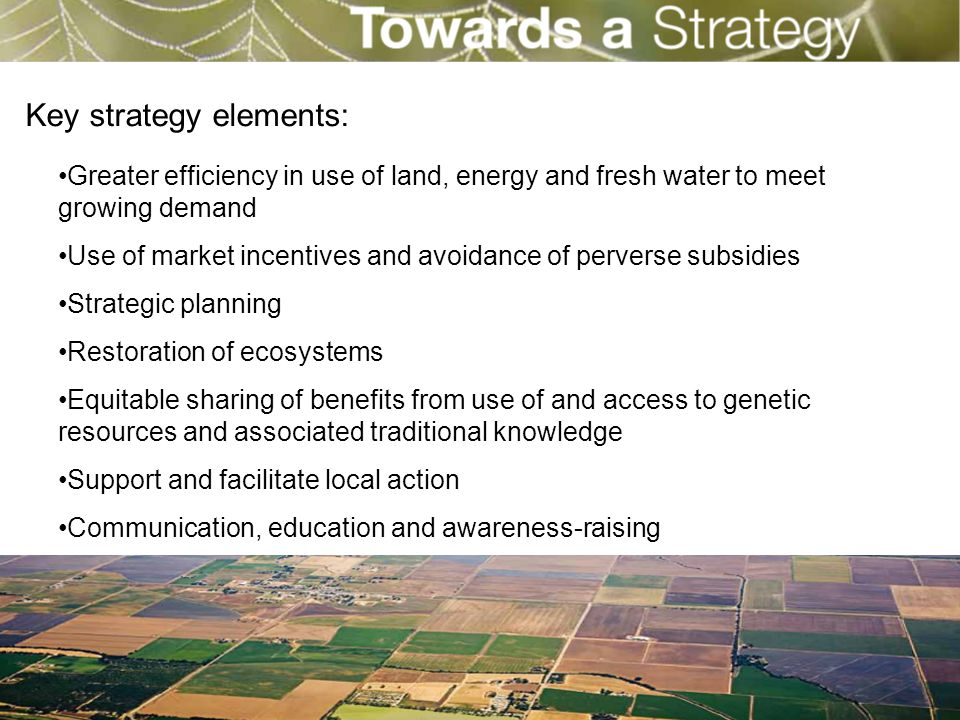 Key strategy elements: