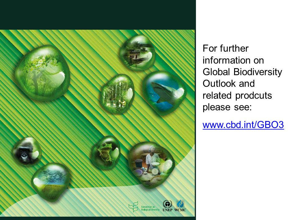 For further information on Global Biodiversity Outlook and related prodcuts please see: