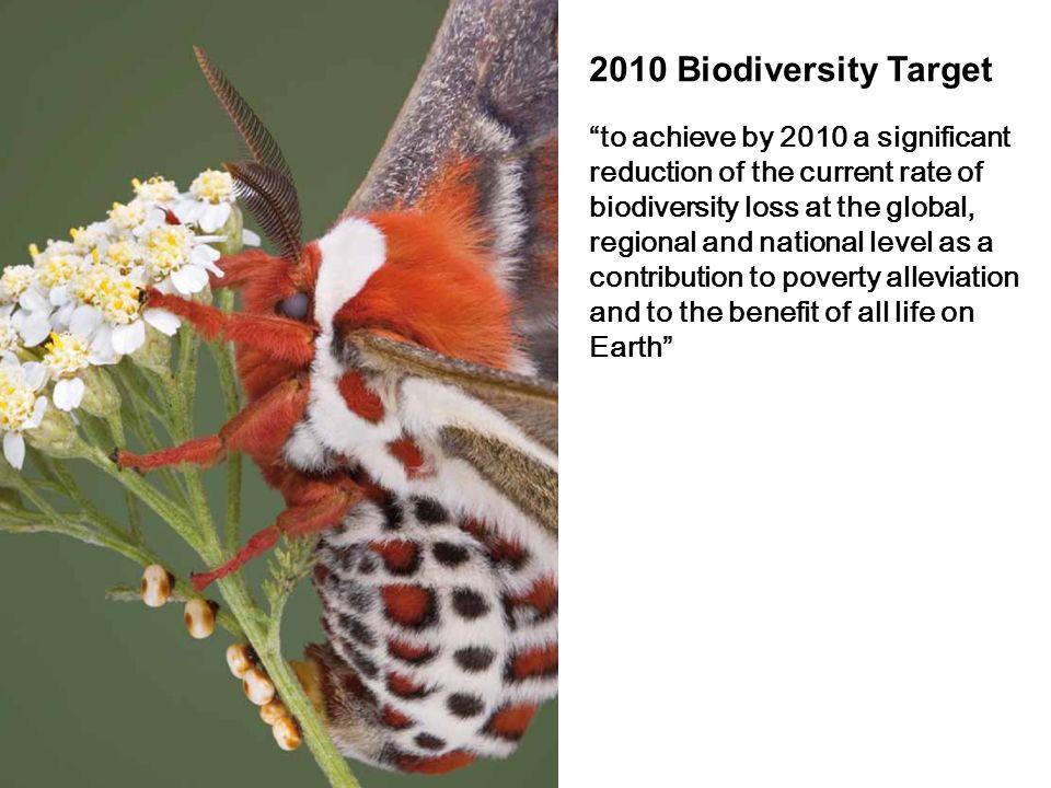2010 Biodiversity Target