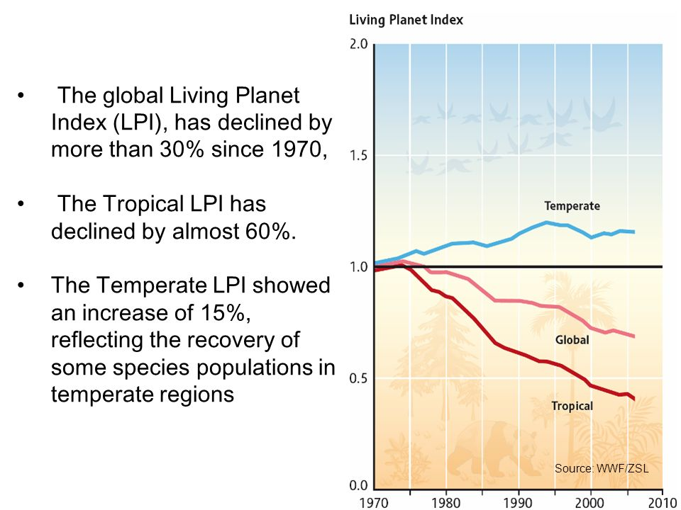 The Tropical LPI has declined by almost 60%.