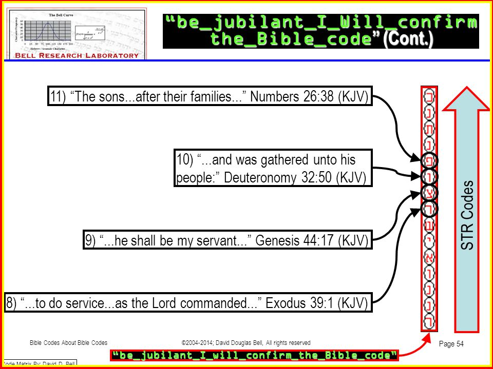 be_jubilant_I_Will_confirm the_Bible_code (Cont.)