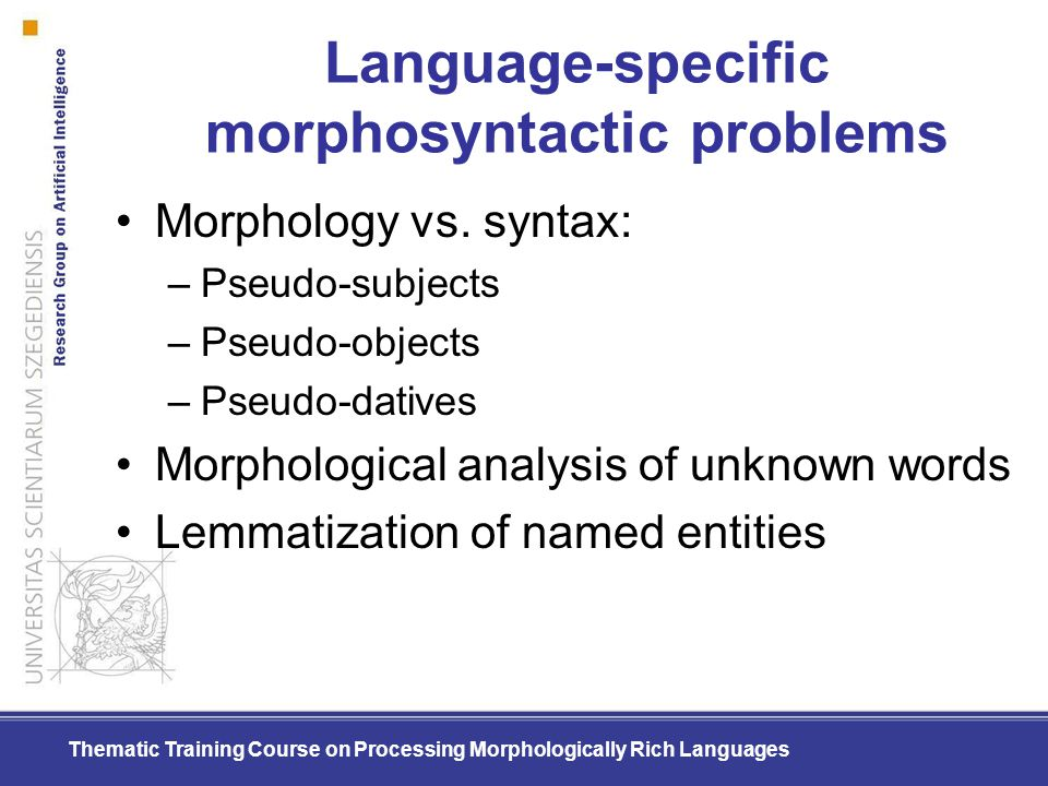 Language-specific morphosyntactic problems