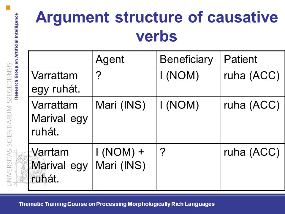 Argument structure of causative verbs