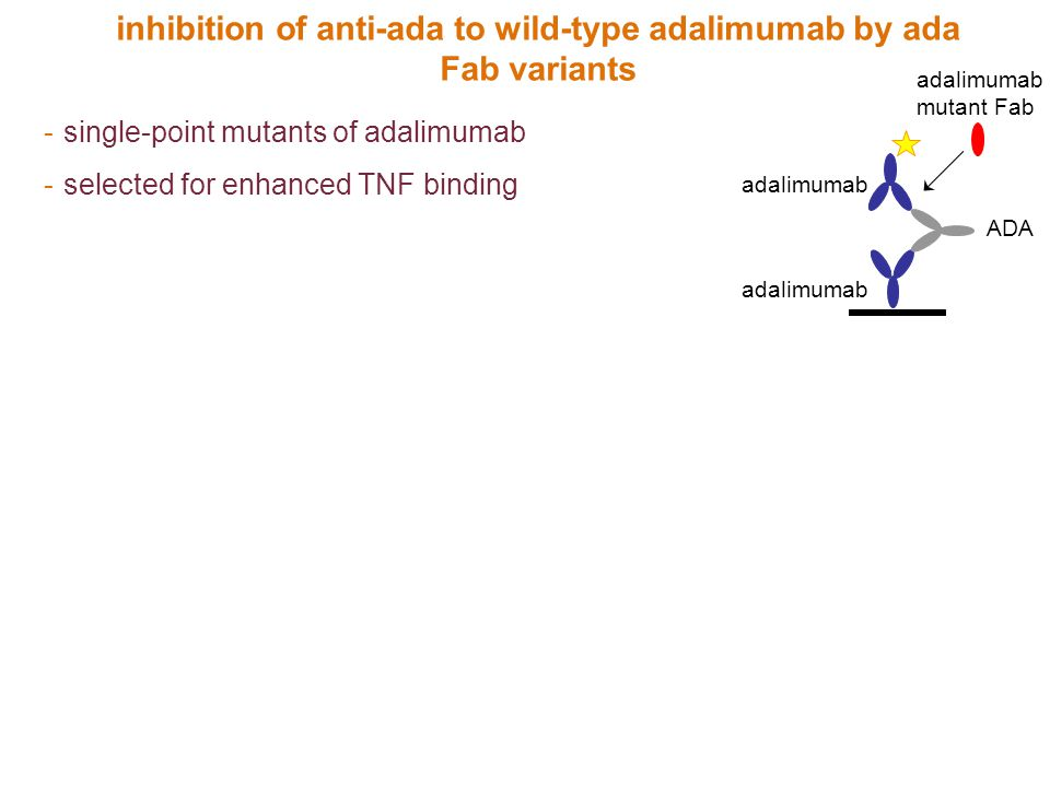 inhibition of anti-ada to wild-type adalimumab by ada Fab variants
