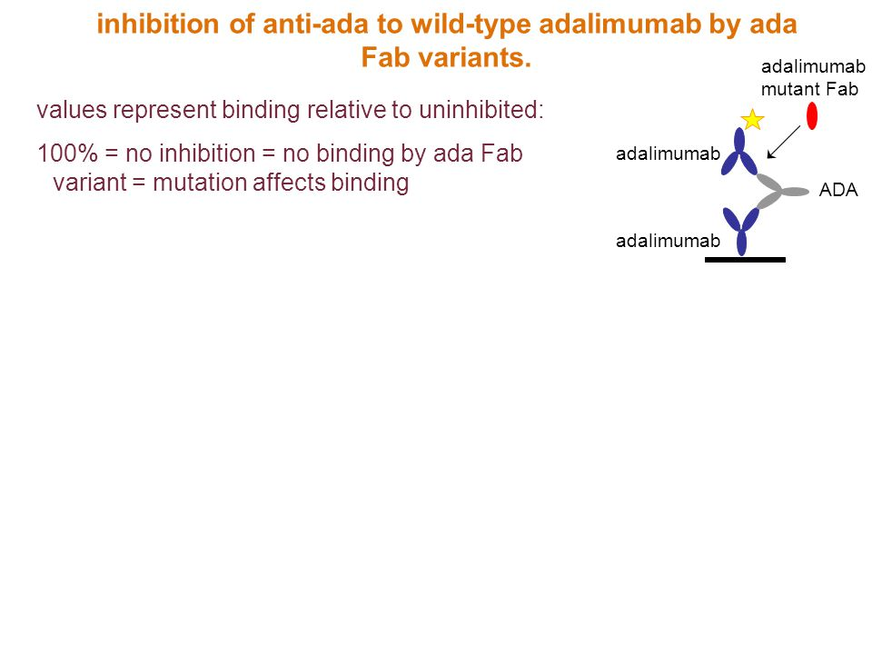 inhibition of anti-ada to wild-type adalimumab by ada Fab variants.