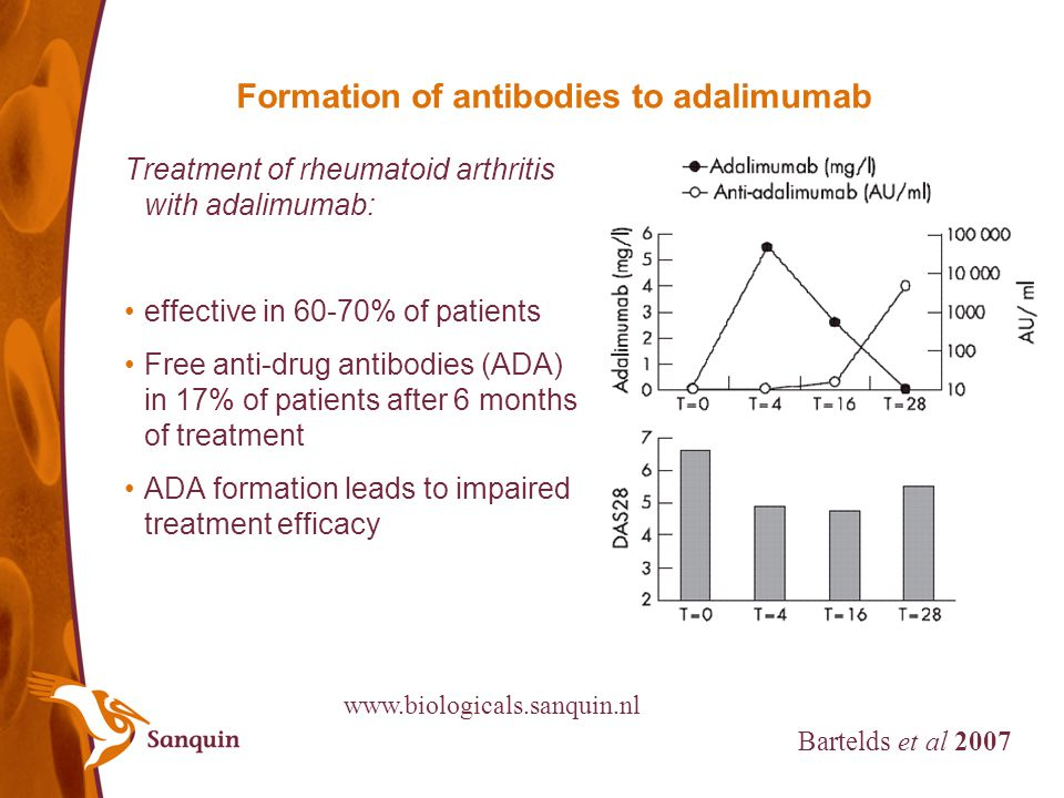 Formation of antibodies to adalimumab