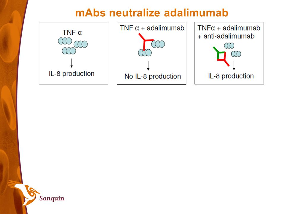 mAbs neutralize adalimumab
