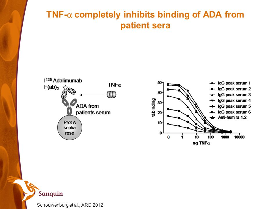 TNF- completely inhibits binding of ADA from patient sera