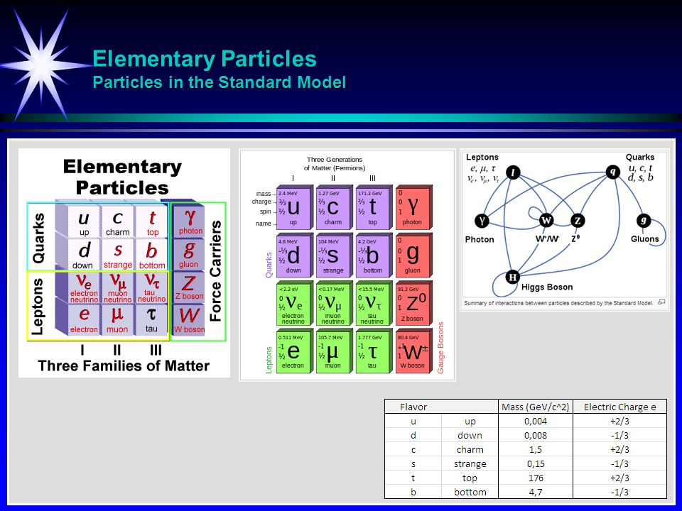 Elementary Particles Particles in the Standard Model