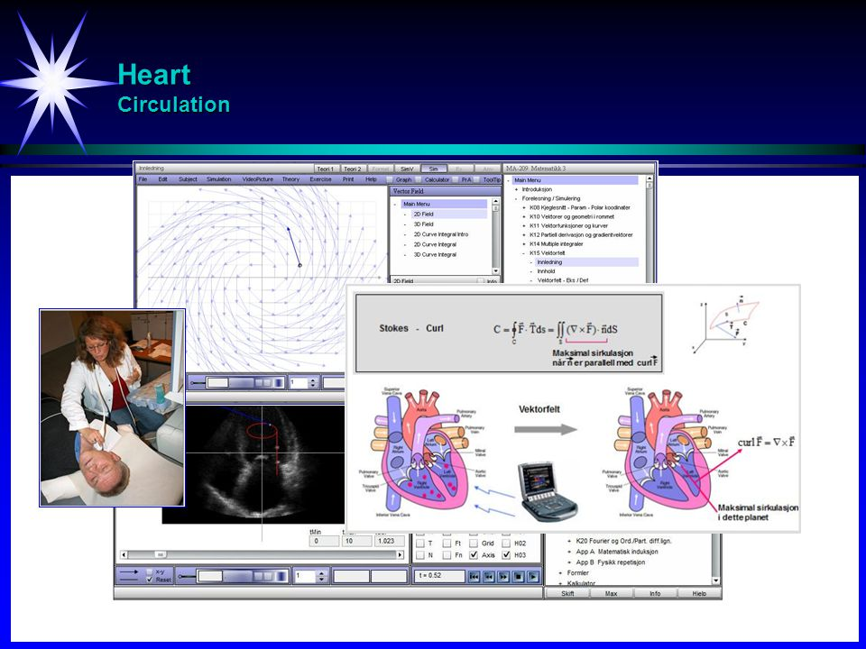 Heart Circulation 48
