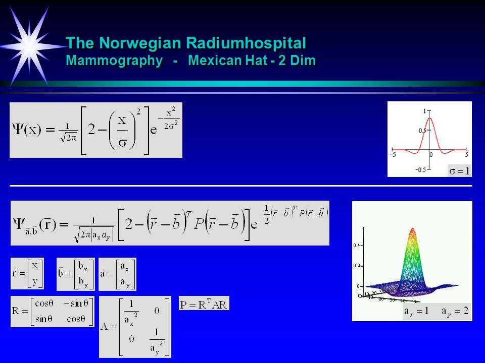 The Norwegian Radiumhospital Mammography - Mexican Hat - 2 Dim