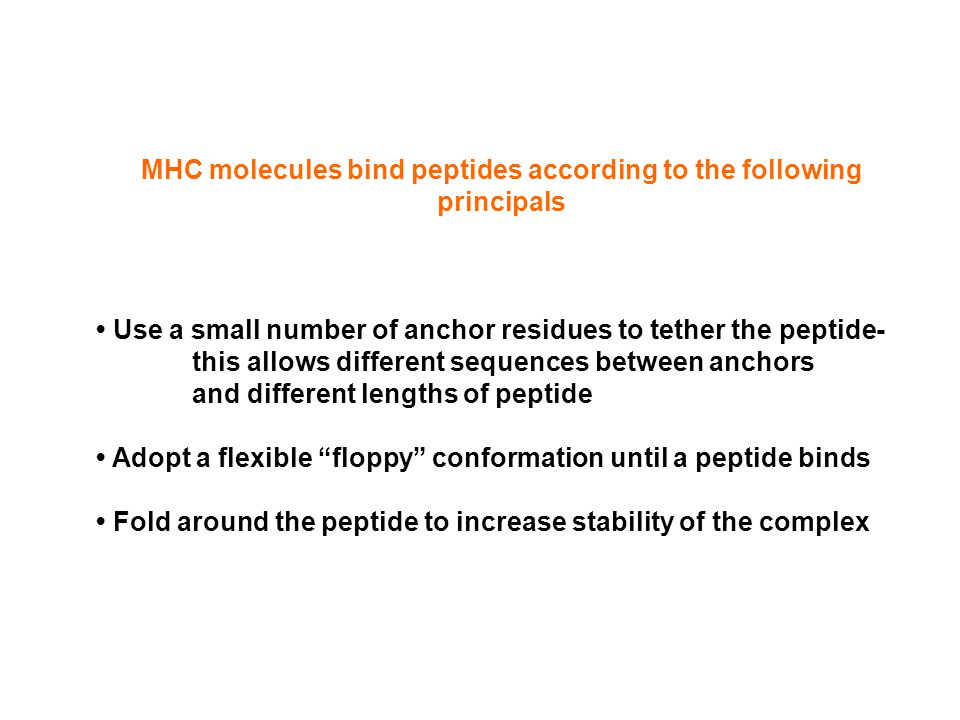 MHC molecules bind peptides according to the following principals