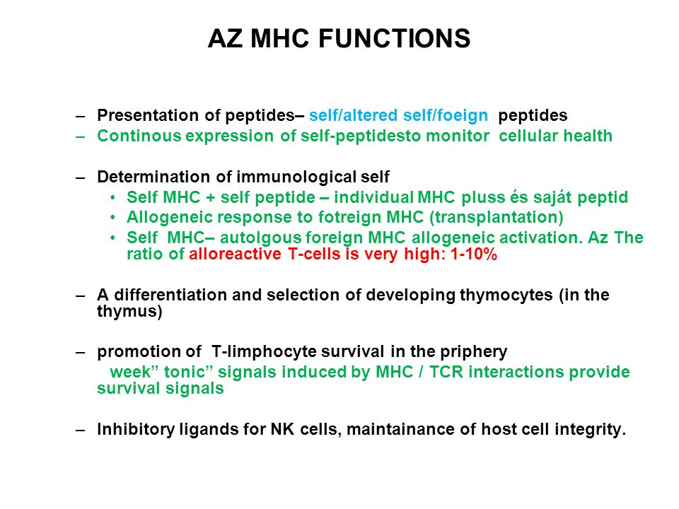 AZ MHC FUNCTIONS Presentation of peptides– self/altered self/foeign peptides. Continous expression of self-peptidesto monitor cellular health.