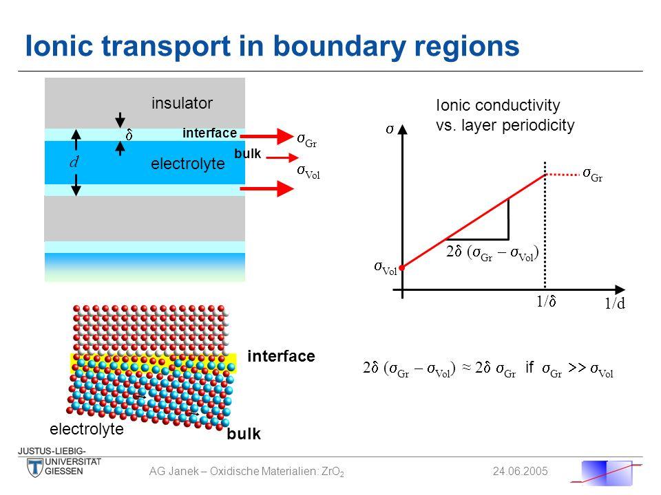 Ionic transport in boundary regions