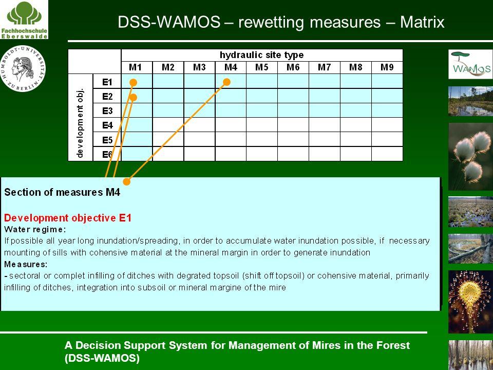 DSS-WAMOS – rewetting measures – Matrix