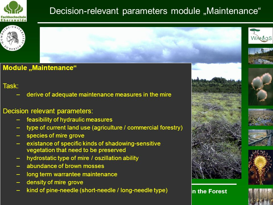 "Decision-relevant parameters module ""Maintenance"