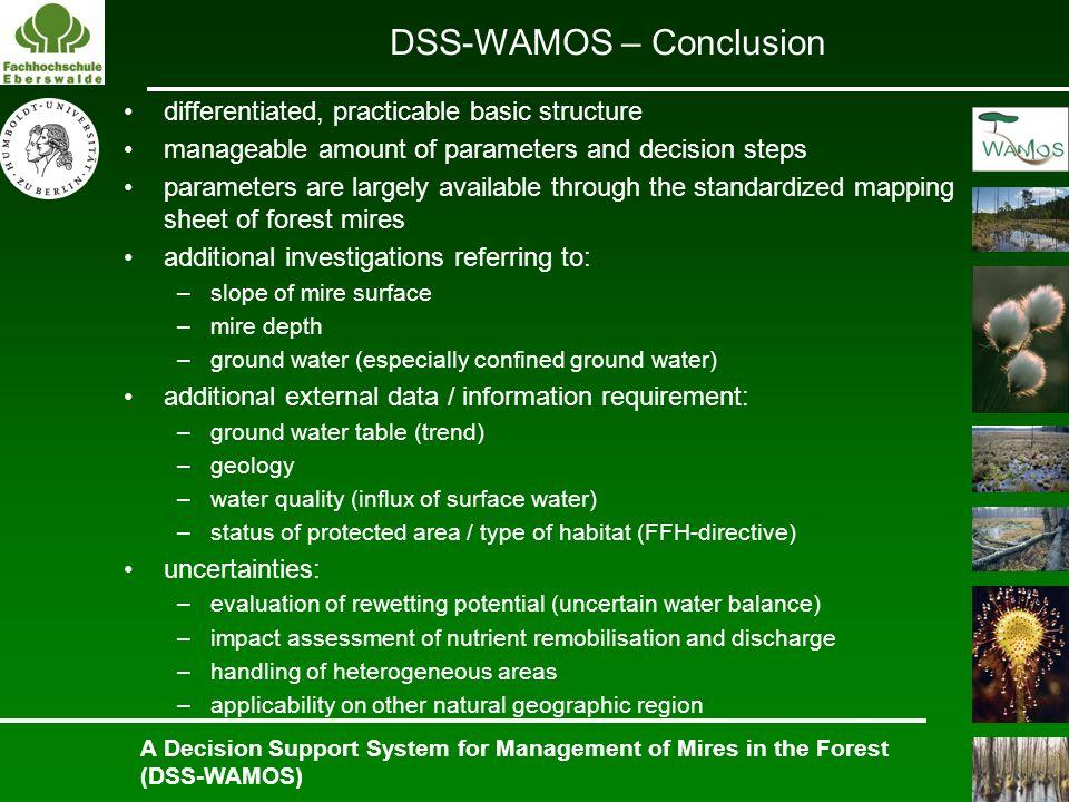 DSS-WAMOS – Conclusion