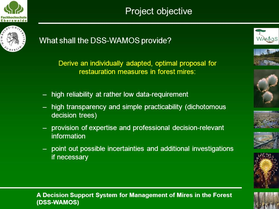 Project objective What shall the DSS-WAMOS provide