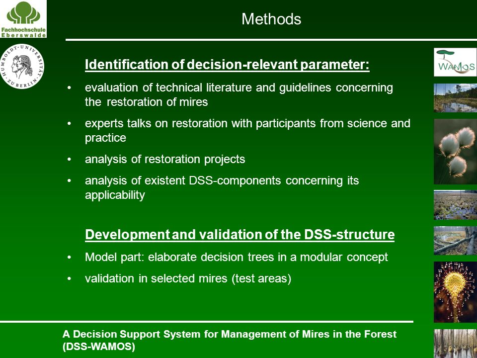 Identification of decision-relevant parameter: