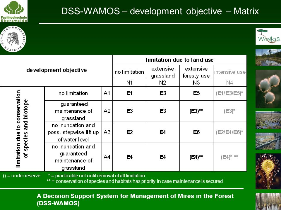 DSS-WAMOS – development objective – Matrix